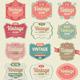 Vintage Badges and Label Vector Set - GraphicRiver Item for Sale