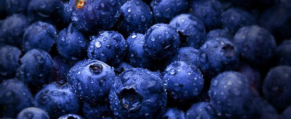 Berries photo 590x242