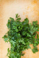 Fresh Organic Parsley - PhotoDune Item for Sale