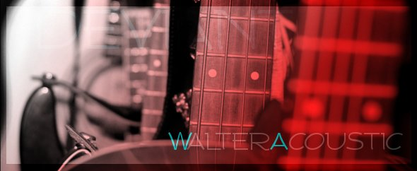 Walteracoustic 2014 1