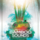 Bamboo Sounds Flyer/Poster Template - GraphicRiver Item for Sale