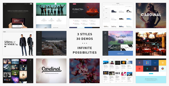 Cardinal - WordPress Theme