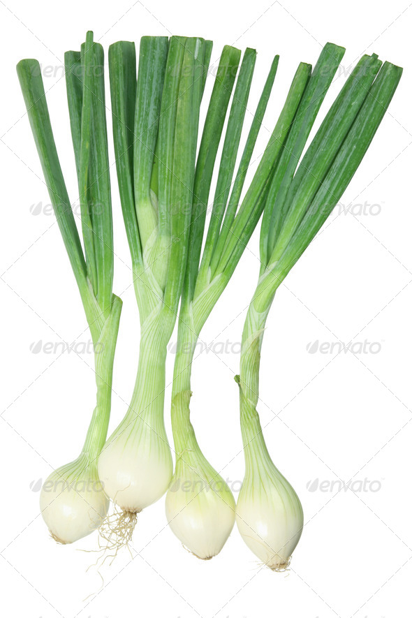 Spring Onions - Stock Photo - Images