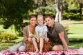 Joyful family picnicking in the park
