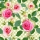 Checked Seamless Pattern with Roses.  - GraphicRiver Item for Sale