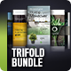 Trifold Brochure Bundle Vol. 4-5-6 - GraphicRiver Item for Sale