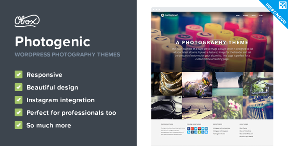 Top 30+ Best Photography WordPress Themes of 2019 6