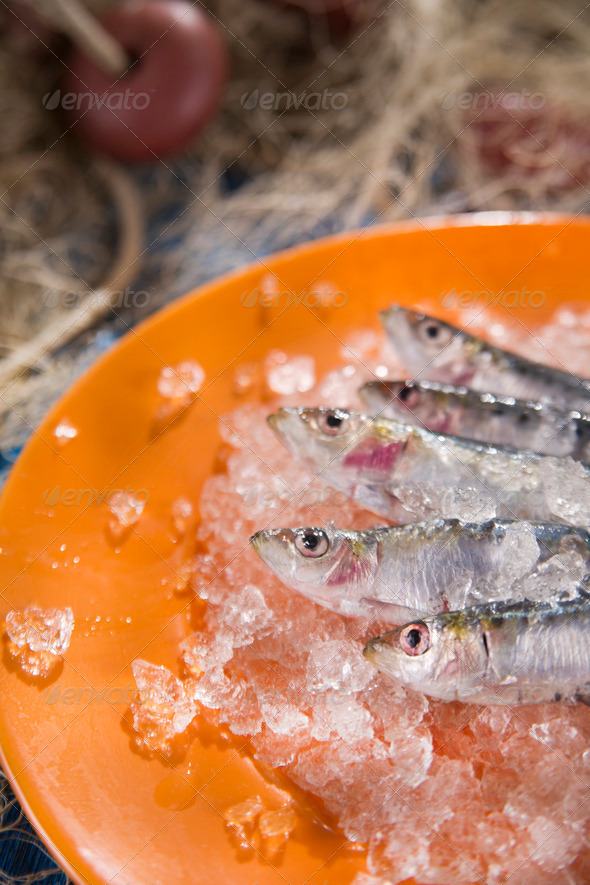 Fresh anchovies on a bed of ice - Stock Photo - Images