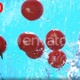 Ripe Cherry Tomatoes Falling Into Water Splash Cascade In Slow Motion 4k - VideoHive Item for Sale