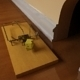 Classic Mouse Trap - 3DOcean Item for Sale