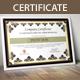 Multipurpose Certificates - GraphicRiver Item for Sale