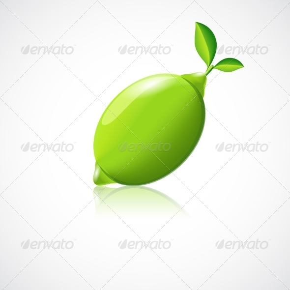 Lime Fruit Icon