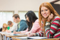 Portrait of a young female student with others writing notes in the classroom - PhotoDune Item for Sale