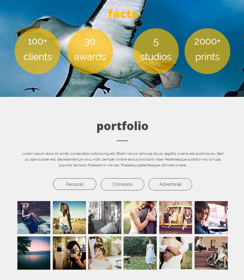 photography resume portfolio muse theme by fadeink themeforest