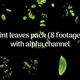 Mint Leaves Pack (8 Footages) - VideoHive Item for Sale