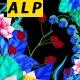Flower Frame Alpha 02 - VideoHive Item for Sale