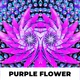 Purple Flower - VideoHive Item for Sale