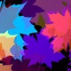 Colorful Leaves  - VideoHive Item for Sale