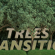 Trees Transition - VideoHive Item for Sale