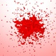 Flow Of Red Color Splash - VideoHive Item for Sale