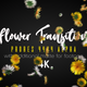 Flower Transition - VideoHive Item for Sale