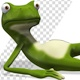 Frog Lying Down Resting - VideoHive Item for Sale