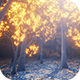Glow Light Forest - VideoHive Item for Sale