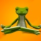 Frog Cartoon Character Doing Yoga - VideoHive Item for Sale
