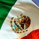 Mexican flag transition - VideoHive Item for Sale