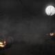 Halloween Night Scene - VideoHive Item for Sale