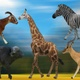 5 Animals Walking Pack - VideoHive Item for Sale