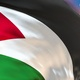 Palestine flag transition - VideoHive Item for Sale