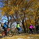 Autumn Park  Bicycles - VideoHive Item for Sale