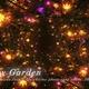 Fantasy Garden - VideoHive Item for Sale