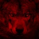 Wolf Looking Around Blood Red Abstract - VideoHive Item for Sale