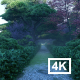 Garden Road - VideoHive Item for Sale