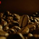 Coffee Brewing Preparation  - VideoHive Item for Sale