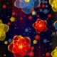 4 K Starfall Flowers - VideoHive Item for Sale
