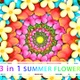 Summer Flower - VideoHive Item for Sale