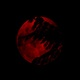 Red Moon Behind The Trees - VideoHive Item for Sale