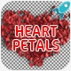 Heart Shape Petals - VideoHive Item for Sale