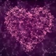Pink Plexus Valentine's Day Heart - VideoHive Item for Sale
