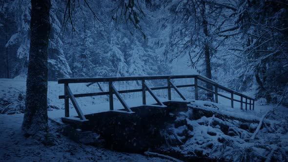 Foot Bridge In Snowy Forest Park At Dusk