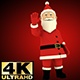 Santa Greeting - VideoHive Item for Sale