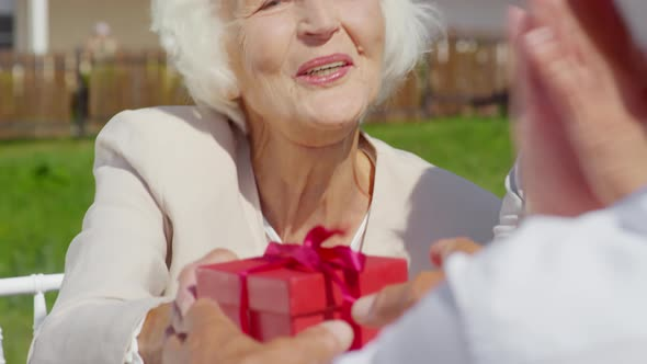 Senior Woman Giving Birthday Present to Husband on Outdoor Party