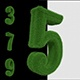 3d Grass Numbers - VideoHive Item for Sale