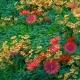 3D Flowers Loop 4k - VideoHive Item for Sale